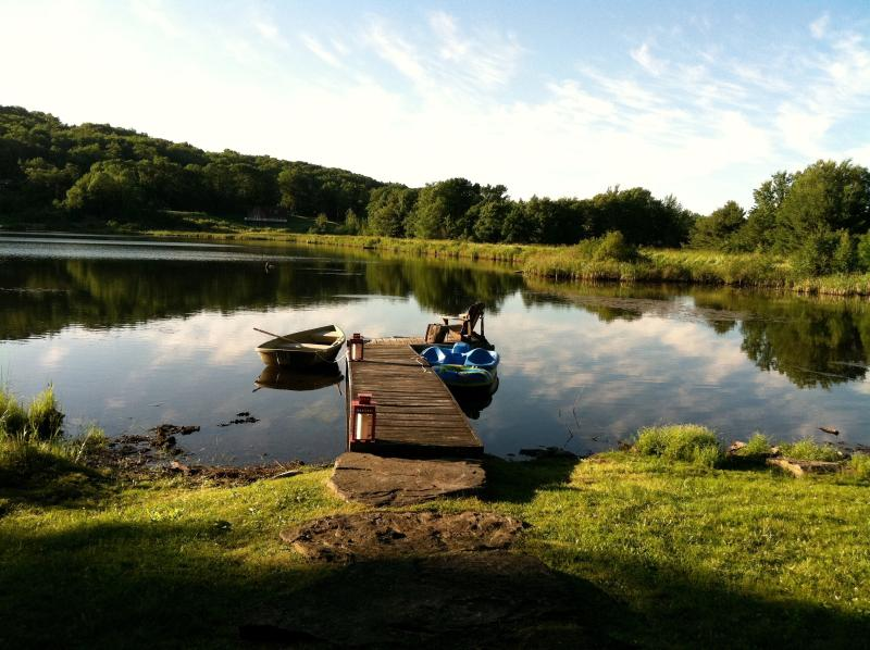 View from cabin - Beautiful LAKE FRONT Log Cabin  - CATSKILLS, NY. - Stamford - rentals