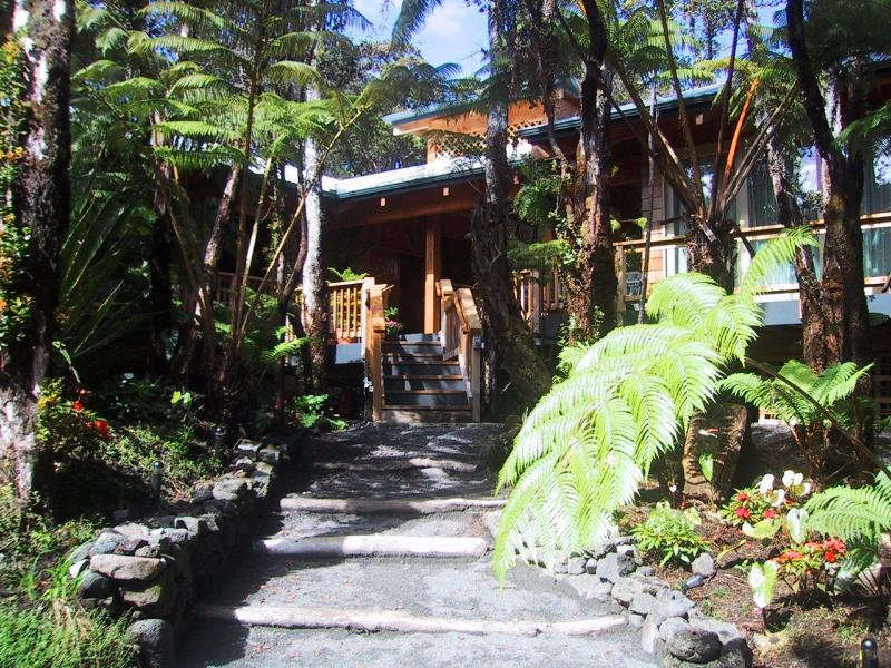 Forest Deck House - Image 1 - Volcano - rentals
