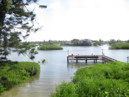 View - Bayfront Small Garden Unit - Sarasota - rentals