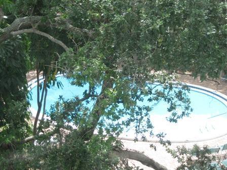 View - Bayside Mid-Rise Unit 302A - Sarasota - rentals