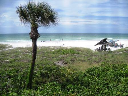 View - Beachfront Garden Unit B - Sarasota - rentals