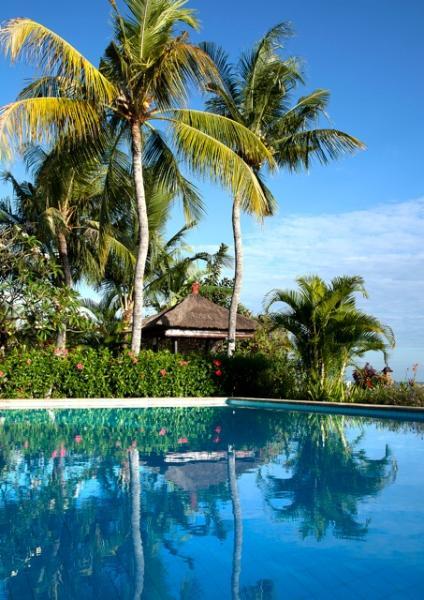 Gazebo and pool - Villa Agus Mas: private beach villa Lovina - Lovina - rentals