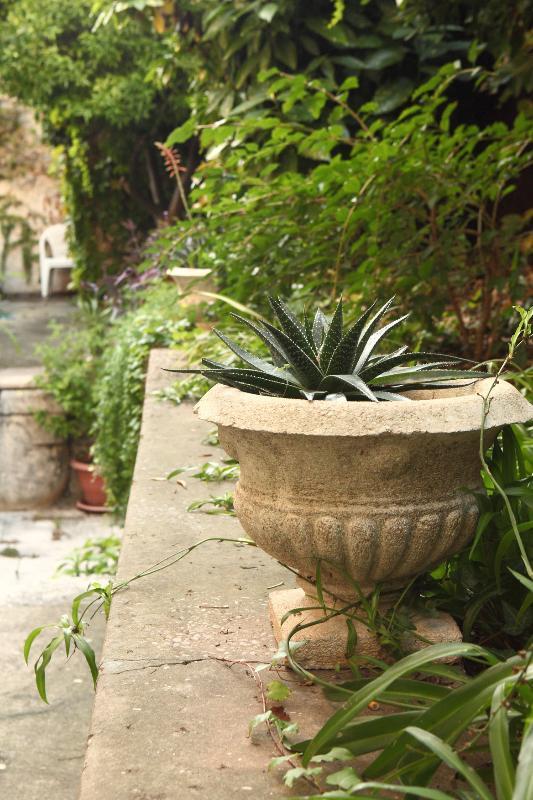 Entrance - Studio apartment in Dubrovnik excellent location - Dubrovnik - rentals