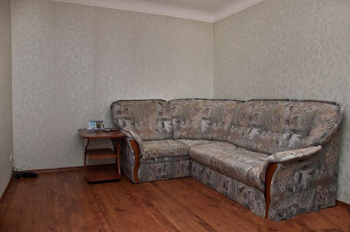 Living room with sofa - Comfortable 2 rooms apartment. - Kiev - rentals