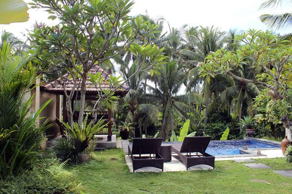 Infinity pool view - b5ca3456-027c-11e3-8467-90b11c1afca2 - Ubud - rentals