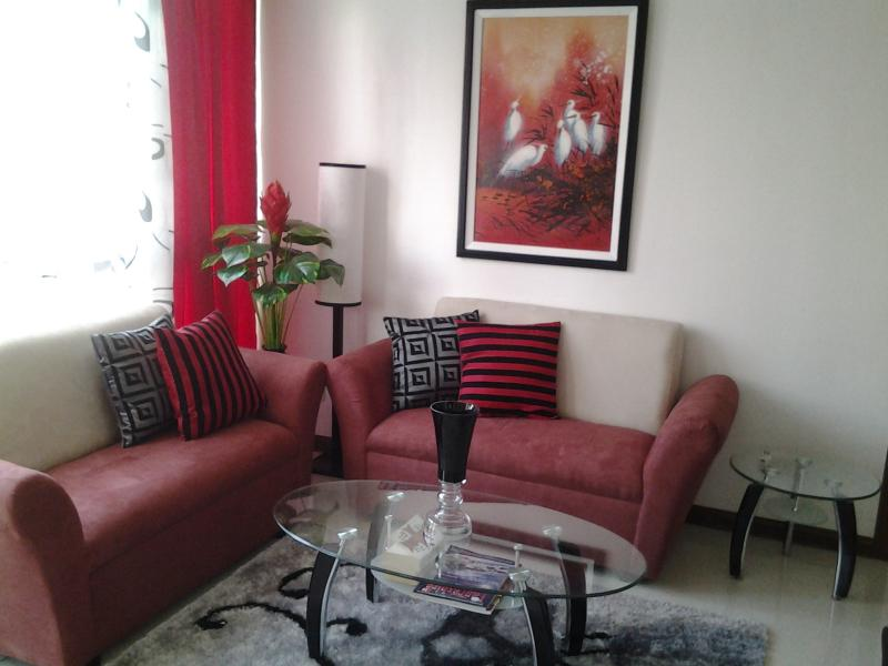 New look lounge - Classy Manila Condo/Apt with Free Airport Pick up - Manila - rentals