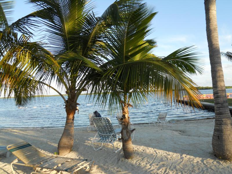Beautiful Private Home with Beach Access in The Fl - Image 1 - Key Largo - rentals