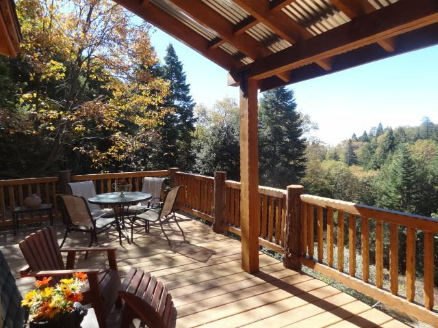 The privacy has the feel of being in the middle of a very private forest... well, you are!!! - Cabin Fever Rustic/Modern Vacation Rental - Palomar Mountain - rentals