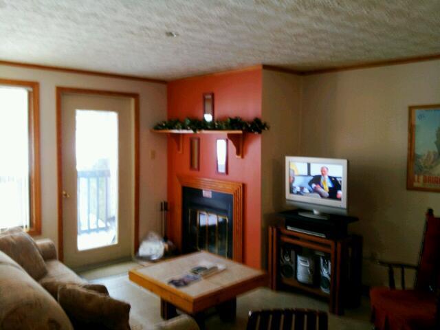 Living Room with Fireplace & Flatscreen TV - Blue Knob Lodging - Claysburg - rentals