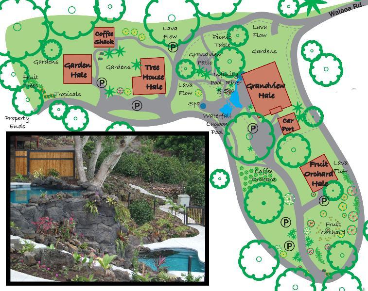 Tropical Paradise Home Heated Pool, Spa, Falls (M) - Image 1 - Holualoa - rentals