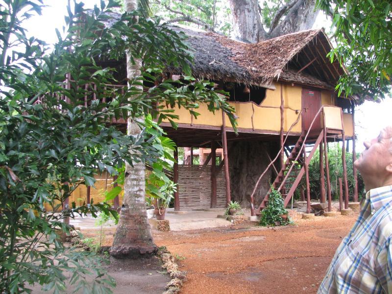Suli House - Suli Tree house - Kenya - rentals