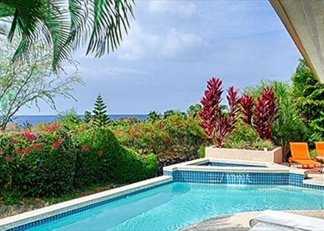 Private Pool with Ocean Views - Papala Place - Great Ocean Views from well appointed 4 Bedroom 3.5 Bath Home-PHPapala - Kailua-Kona - rentals