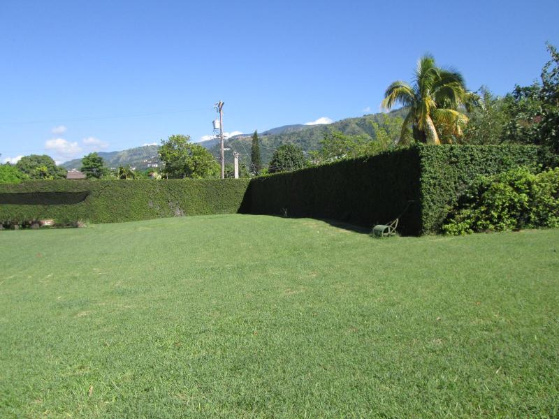 Front Lawn - Spacious, most central, private pool, secure - Kingston - rentals
