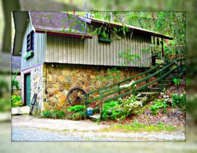 Cabin along a rushing trout water - Mountain Cabin on Trout River-A Breath of Fresh Ai - Robbinsville - rentals