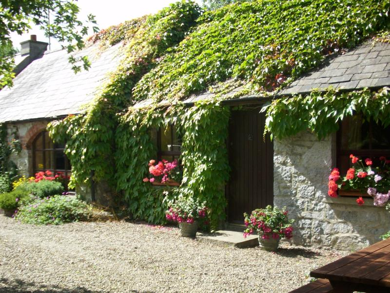 Two bedroom cottage - Coolbeg Lodge, charming country cottage near Adare - Limerick - rentals