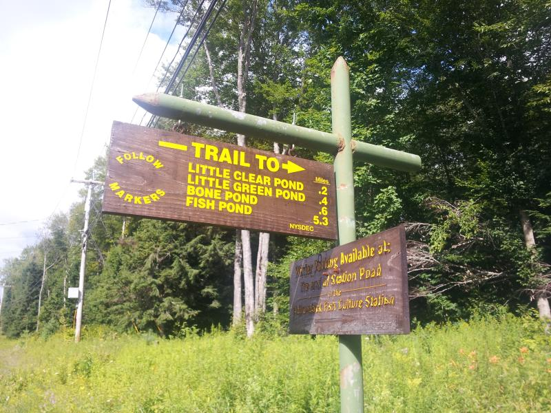 Trailhead directly across from cabin - Cozy cabin in Adirondacks: St. Regis Canoe Region - Saranac Lake - rentals
