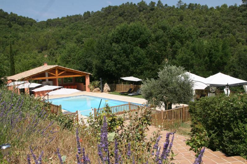 The pool - Gite de la Sauge-Wonderful, Pet-Friendly 4 Bedroom Cottage - Brignoles - rentals