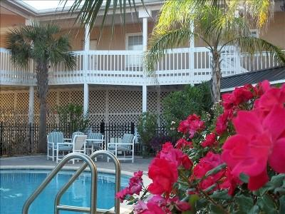 pool oasis - Downtown Flagler Beach Hideaway - Flagler Beach - rentals