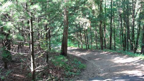 1/4 milePrivate Drive - Wren Eagle Retreat - Chillicothe - rentals