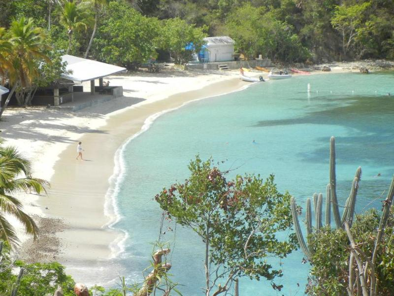 Honeymoon Beach - short walk away - Oceanfront private home on Water Island St. Thomas - Water Island - rentals