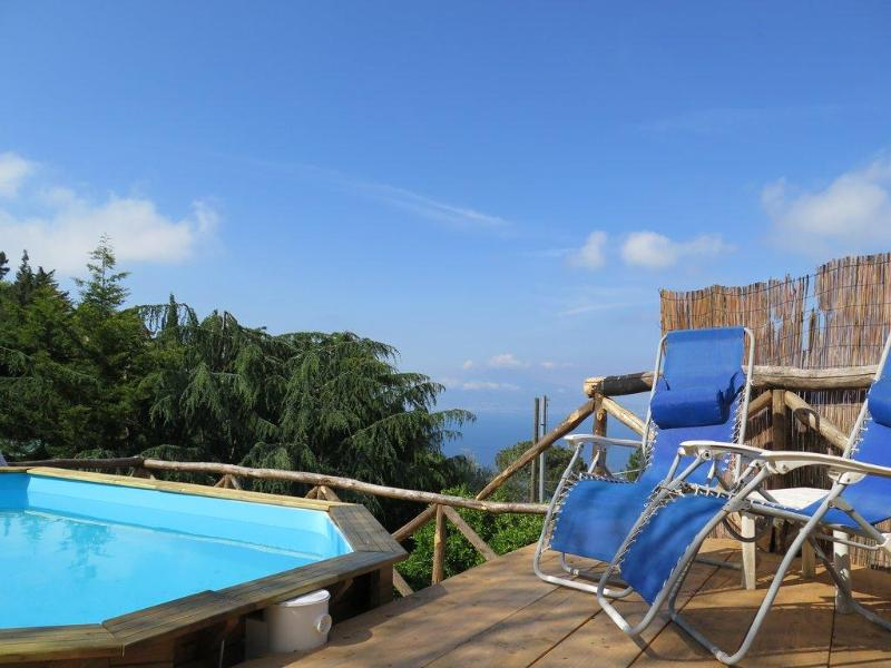 swimming pool - SPECIAL OFFERS  Villa sea view on Sorrento's hills - Sorrento - rentals