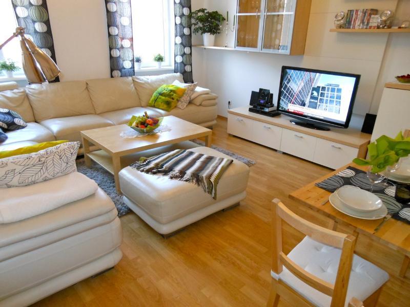 Spacious living room - Next to Palace Schönbrunn - Apt. 1 - Vienna - rentals