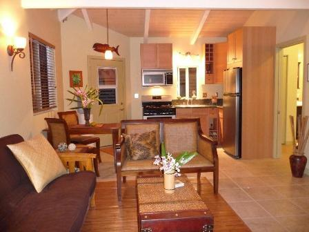 The Pineapple Express-Ocean View and Spa - Image 1 - Captain Cook - rentals