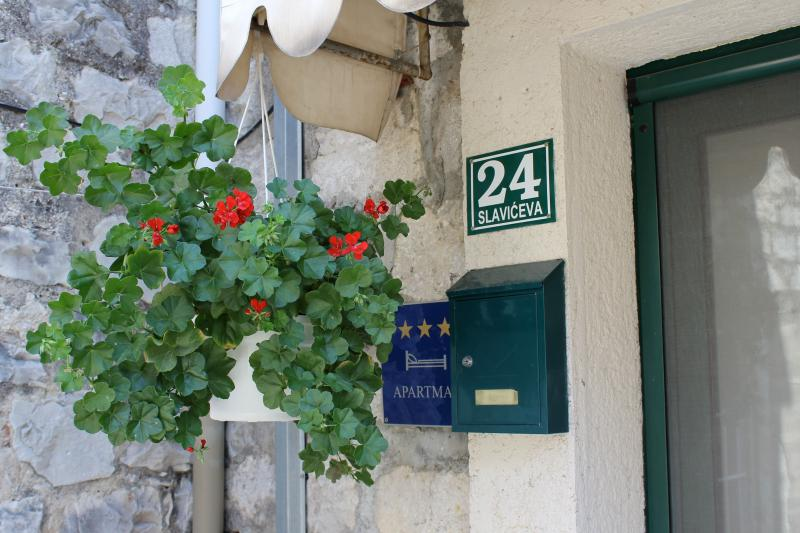 Geranium...so nice fits with green windows on the Dalmatian stone houses - Charming apartment in old Split - Split - rentals
