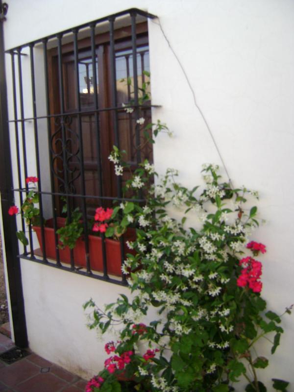 Pueblo Blanco. - Image 1 - Chivilcoy - rentals
