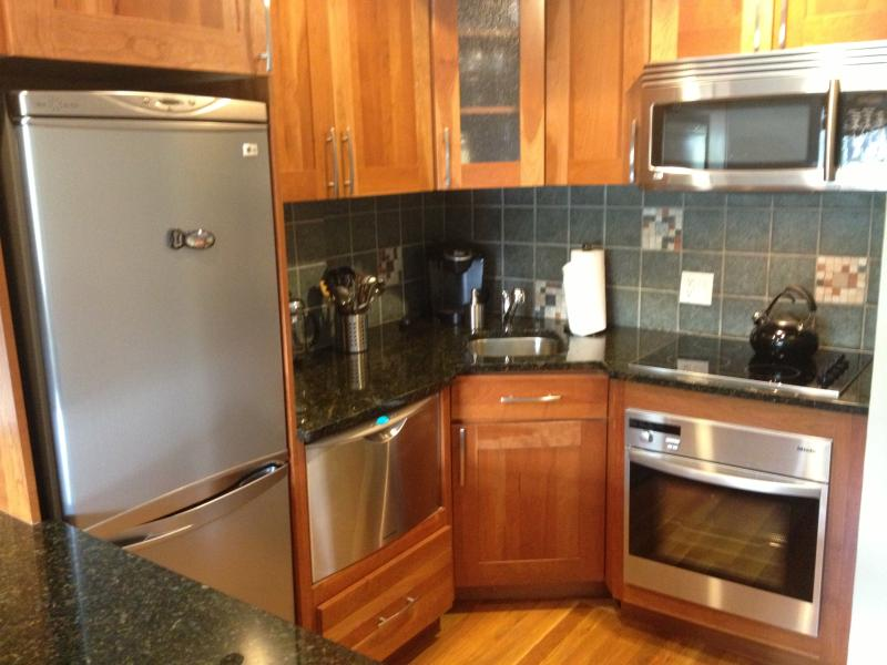 Full kitchen with stainless steel appliances - Great Location: Back Bay Apt. for 2 or fam. of 4 - Boston - rentals