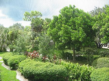 View - Wild Pines - Bonita Bay A-205 - Bonita Springs - rentals