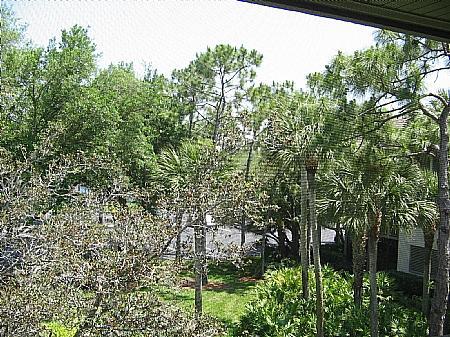 View - Wild Pines - Bonita Bay B-302 - Bonita Springs - rentals