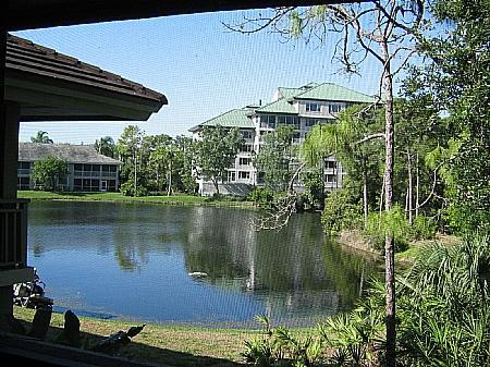View - Wild Pines - Bonita Bay E-210 - Bonita Springs - rentals
