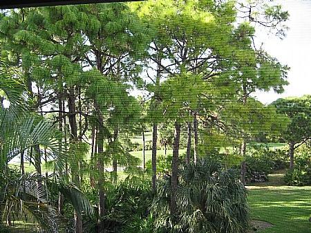 View - Wild Pines - Bonita Bay C-305 - Bonita Springs - rentals