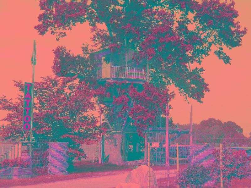Tree-house for rent - Image 1 - Hohenhameln - rentals