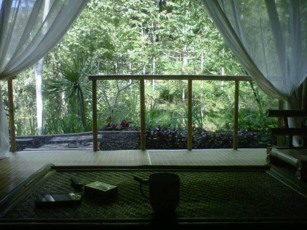 Living Room - DD Ubud Villa of Bamboo House - Gianyar - rentals