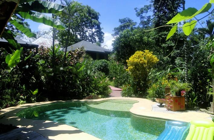 Swimming pool and bungalows - PHIDJIE LODGE - B&B - BUNGALOWS - SOUTHERN PACIFIC - Ojochal - rentals