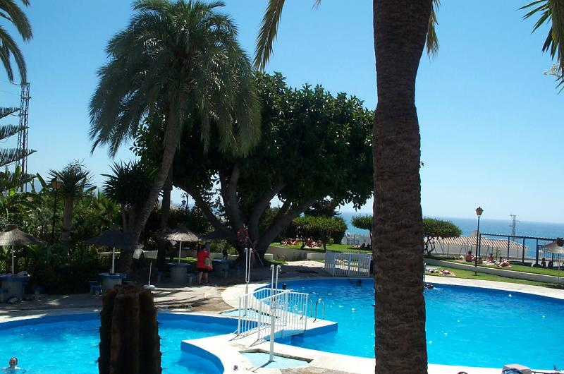 Gorgeous swimming pool - Studio 200m from beach, pool, terrace. - Nerja - rentals