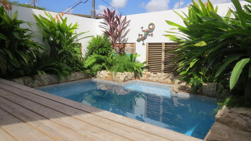 UNIQUE apartment with private POOL in city center Willemstad, near shops and sea - Image 1 - Willemstad - rentals