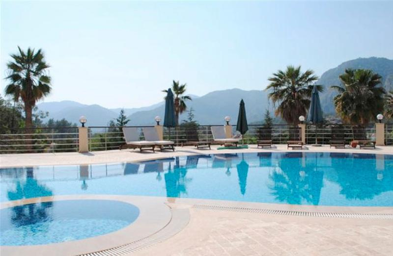 The swimming pool and its breath taking view. - Modern and Spacious ground floor Duplex apartment - Gocek - rentals