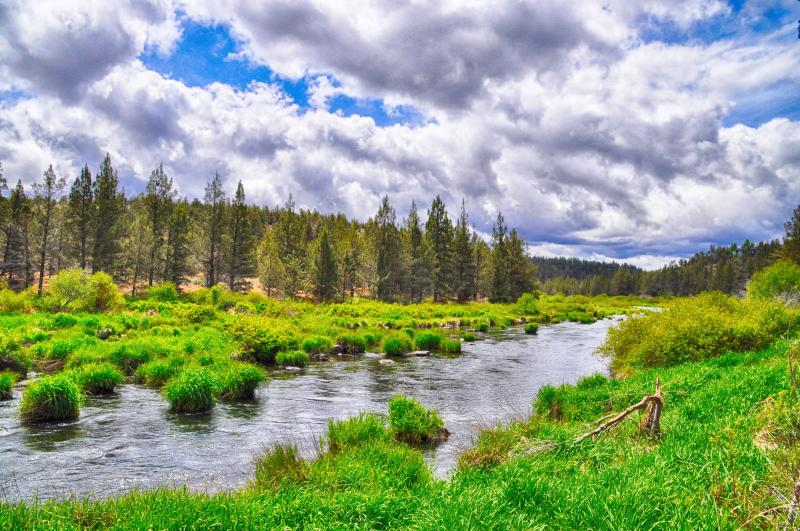 Hiking trail along the Deschutes River within the resort - Eagle Crest Golf Course Home: Hike 'n Bike, NEW! - Redmond - rentals