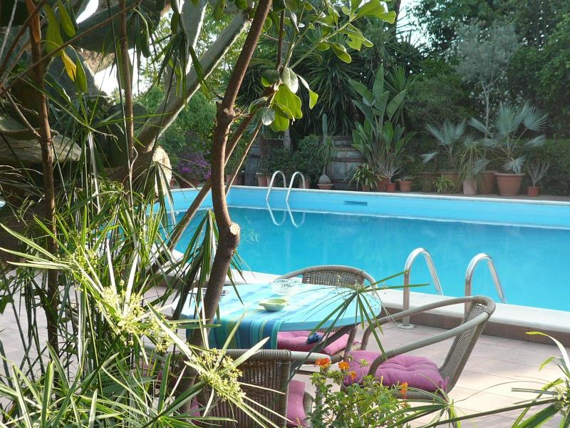 swimming-pool - Cottage in a villa with pool and tropical garden - Viagrande - rentals