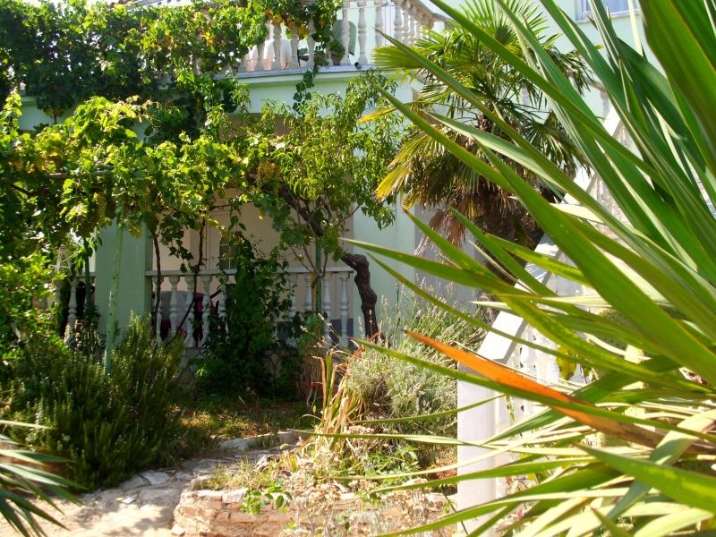 olivera apartman - rest in silence beside a pine forest near the sea - Pula - rentals