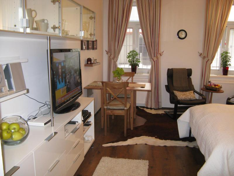 Modern Studio - all you need in 30m2 - Next to Palace Schönbrunn - Apt. 2 - Vienna - rentals