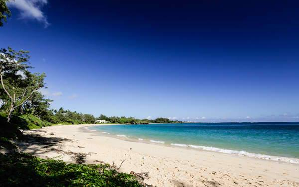 Beachside Getaway Estate - Beachside Getaway Estate - Laie - rentals