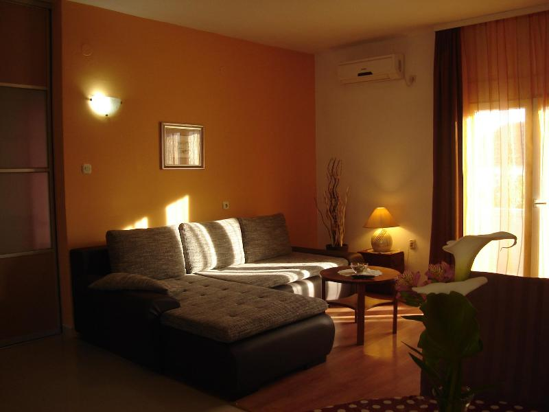 Comfortable and sunny living room with pull-out double bed and with exit to terrace - Spacious apartment with large terrace - Zadar - rentals
