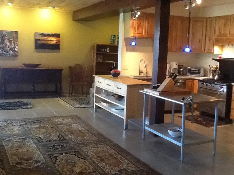 Great room - New home near Telluride,Colorado - Norwood - rentals