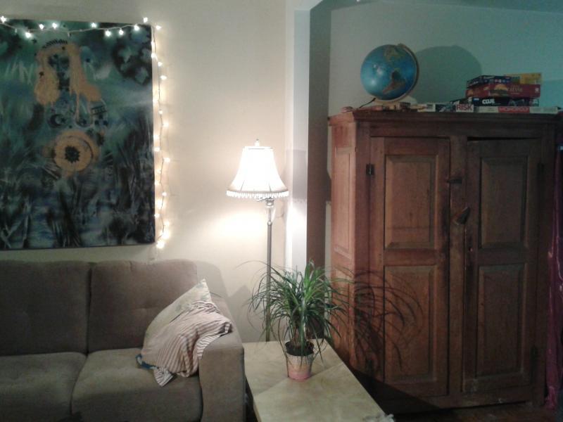 2 bdr,  sunny , plateau Mont-Royal, quiet, clean - Image 1 - Montreal - rentals