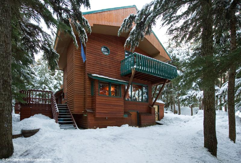 Timberline Drive Ski Cabin - Timberline Drive Ski Cabin - Girdwood - rentals