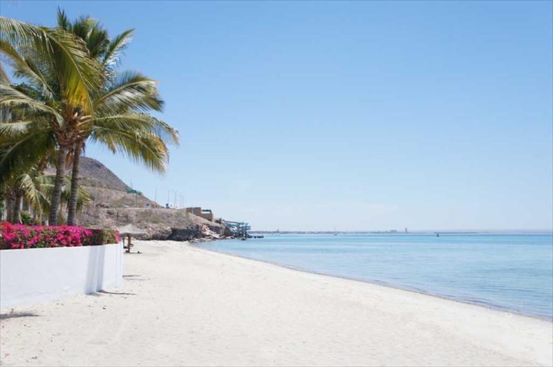 Beach - 102 Studio at La Concha Beach Resort - La Paz - rentals